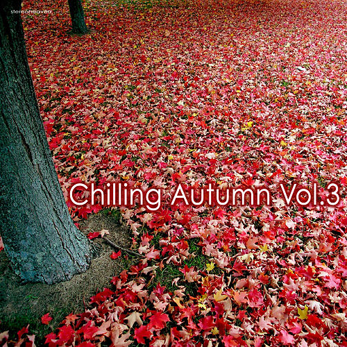 Chilling Autumn, Vol. 3 by Various Artists