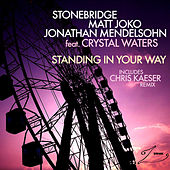 Standing In Your Way by Stonebridge