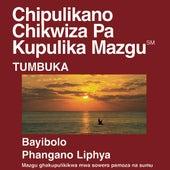 Chitumbuka New Testament (Dramatized) by The Bible
