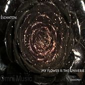 My Flower Is The Universe - Single by Various Artists