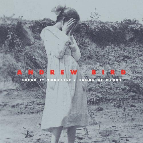 Break It Yourself / Hands of Glory (Deluxe) by Andrew Bird