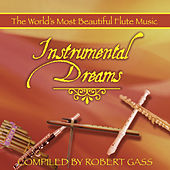 Instrumental Dreams: Flute by Various Artists