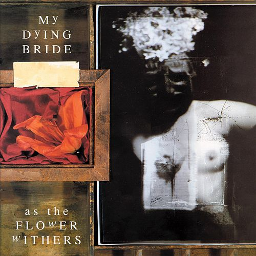 As the Flower Withers [Bonus Track] by My Dying Bride
