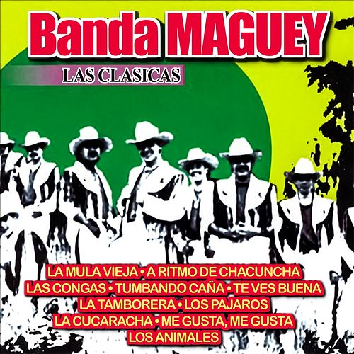 Las Clasicas by Banda Maguey
