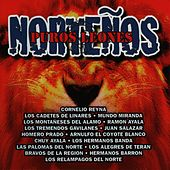 Puros Leones Nortenos by Various Artists