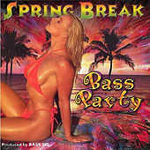 Spring Break Bass Party by Various Artists