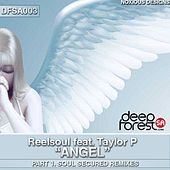 Angel Pt.1 (Soul Secured Remixes) (feat. Taylor P) by Reel Soul