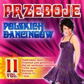Polish Dance Clubs Hits Vol. 11 by Przeboje Polskich Dancingów