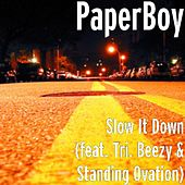 Slow It Down (feat. Tri. Beezy & Standing Ovation) by Paperboy