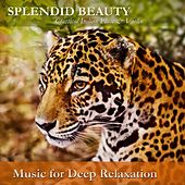 Splendid Beauty: Classical Indian Flute & Violin by Music For Relaxation