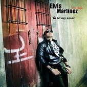 Yo te voy amar by Elvis Martinez