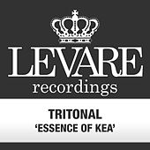 Essence of Kea by Tritonal