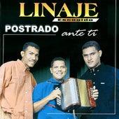 Postrado Ante Ti by Linaje Escogido