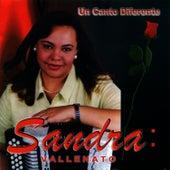 Un Canto Diferente by Sandra