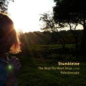 The Beat My Heart Skips - Single by Stumbleine