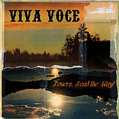 Lovers, Lead The Way! by Viva Voce