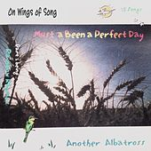 Must 'a Been a Perfect Day by Another Albatross
