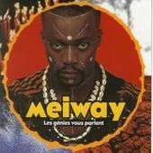 Les génies vous parlent by Meiway