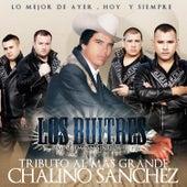 Tributo Al Mas Grande Chalino Sanchez by Los Buitres De Culiacán Sinaloa