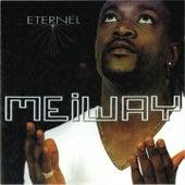 Eternel (700% Zoblazo) by Meiway
