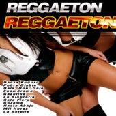 Reggaeton by Various Artists