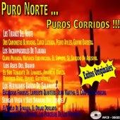 Puro Norte Puros Corridos by Various Artists