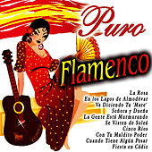 Puro Flamenco by Various Artists