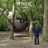 Stamina by Vitalic