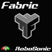 Raiders - EP by Fabric