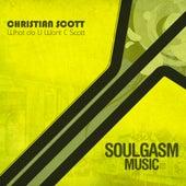 What Do U Want C Scott by Christian Scott