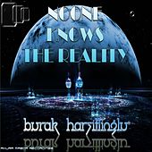 Noone Knows The Reality by Burak Harsitlioglu