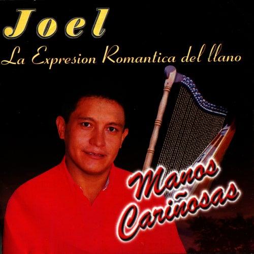 Manos Cariñosas by Joel