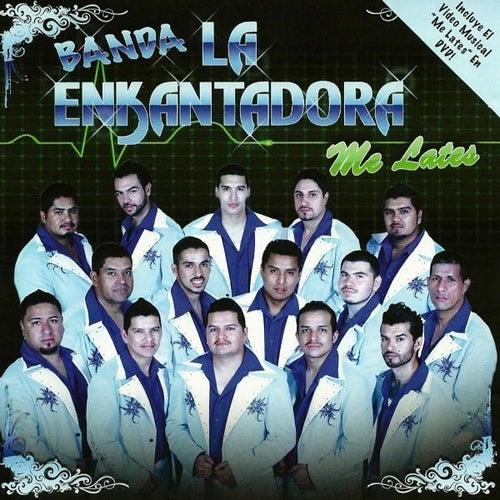 Me Lates by Banda La Enkantadora