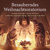 Bezauberndes Weihnachtsoratorium - Jauchzet, frohlocket! - Bereite dich Zion - Großer Herr und starker König - Ehre sei Gott in der Höhe von Various Artists