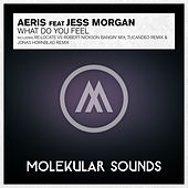 What Do You Feel? (feat. Jess Morgan) by Aeris