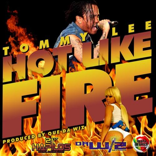 Hot Like Fire - Single by Tommy Lee