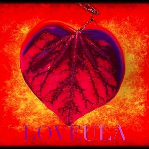 Loveula by Love