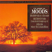 Classical Moods by Various Artists