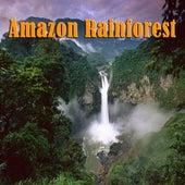 Amazon Rainforest by Natural Sounds