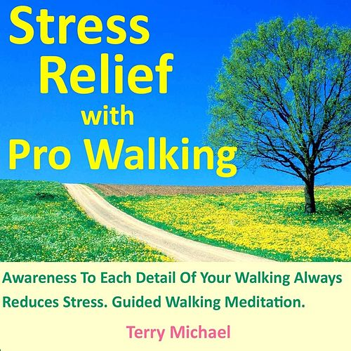Stress Relief With Pro Walking. Awareness to Each Detail of Your Walking Always Reduces Stress. Guided Walking Meditation. by Terry Michael