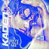 A Boy Like Me by Kaden