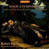 Magica Sympathiae by Rafael Puyana