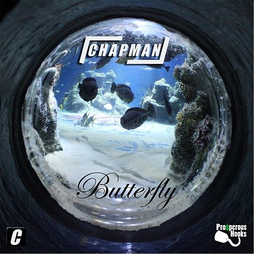 Butterfly by Chapman