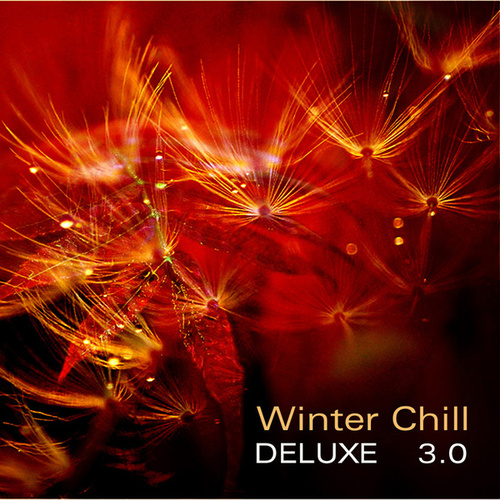 Winter Chill Deluxe 3.0 by Various Artists