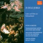 In dulci jubilo (Lieder und Chöre zur Weihnachtszeit) von Various Artists