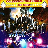 30 Exitos by Banda Astilleros