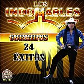 Corridos 24 Exitos by Los Indomables