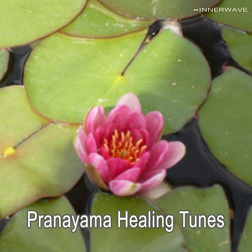 Pranayama Healing Tunes by Various Artists