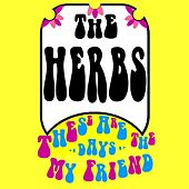 These Are the Days My Friend by Herbs