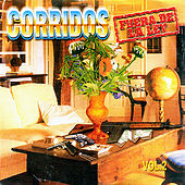 Corridos Fuera de la Ley, Vol. 2 by Various Artists